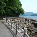 淡島マリンパークの写真_3457