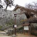 唐津城の写真_3797
