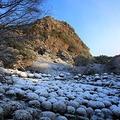 御船山楽園の写真_38054