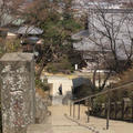 少林山達磨寺の写真_51592