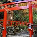 貴船神社の写真_58408