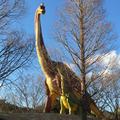 豊橋総合動植物公園 (のんほいパーク)の写真_62966