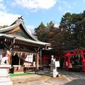 三光稲荷神社の写真_8581