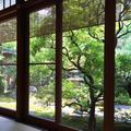 茶寮 宝泉の写真_88670