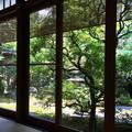 茶寮 宝泉の写真_88751