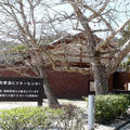 大久野島ビジターセンターの写真_111198