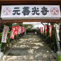 元善光寺の写真_112713