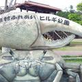 東村ふれあいヒルギ公園の写真_113117