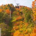 八幡山ロープウェーの写真_119600