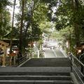 大神神社の写真_122405