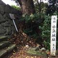 小浜城址の写真_157836