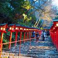 貴船神社の写真_158652