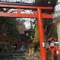 貴船神社の写真_166872