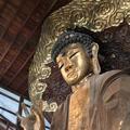 正法寺の写真_171909