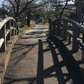 歴史を語る公園の写真_172062