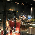 神奈川県立生命の星・地球博物館の写真_172601