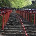 貴船神社の写真_173602