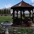 紫竹ガーデン遊華の写真_179871