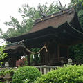 吉備津彦神社の写真_183614