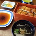 博多名代吉塚うなぎ屋の写真_186334