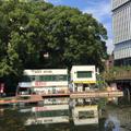 弁慶橋ボート場の写真_199025