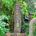 養生館はるのひかりの写真_201210