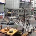 渋谷交差点の写真_212193