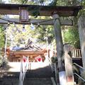 幣立神宮(幣立神社)の写真_218858