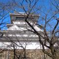 小倉城の写真_223715