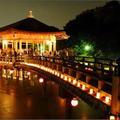 奈良公園 浮見堂の写真_224980