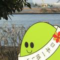 天保山公園の写真_226723