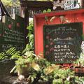 ミーシャのハーブ庭園 ブーケ ダルブルの写真_236013