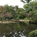 有栖川宮記念公園の写真_244535