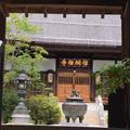 信綱寺の写真_250892