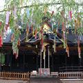 大崎八幡宮の写真_253460