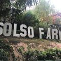 Solso Farmの写真_270832