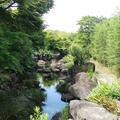 竹林園の写真_272126