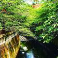 目黒天空庭園の写真_273610
