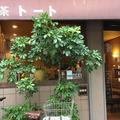 喫茶トートの写真_275289