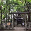 宝登山神社 奥宮の写真_277712
