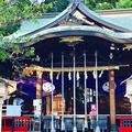 鎮守氷川神社の写真_277731