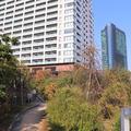目黒天空庭園の写真_278277