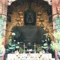 東大寺金堂(大仏殿)の写真_279386