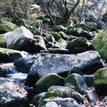 マゼノ渓谷の写真_282865