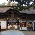 大崎八幡宮の写真_284327