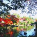 成田山公園の写真_310283