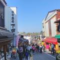 成田(成田山表参道)の写真_310297