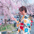 嵐山公園の写真_322147