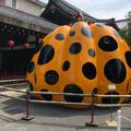 【閉館】フォーエバー現代美術館 祇園京都の写真_326804