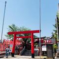 三光稲荷神社の写真_330532